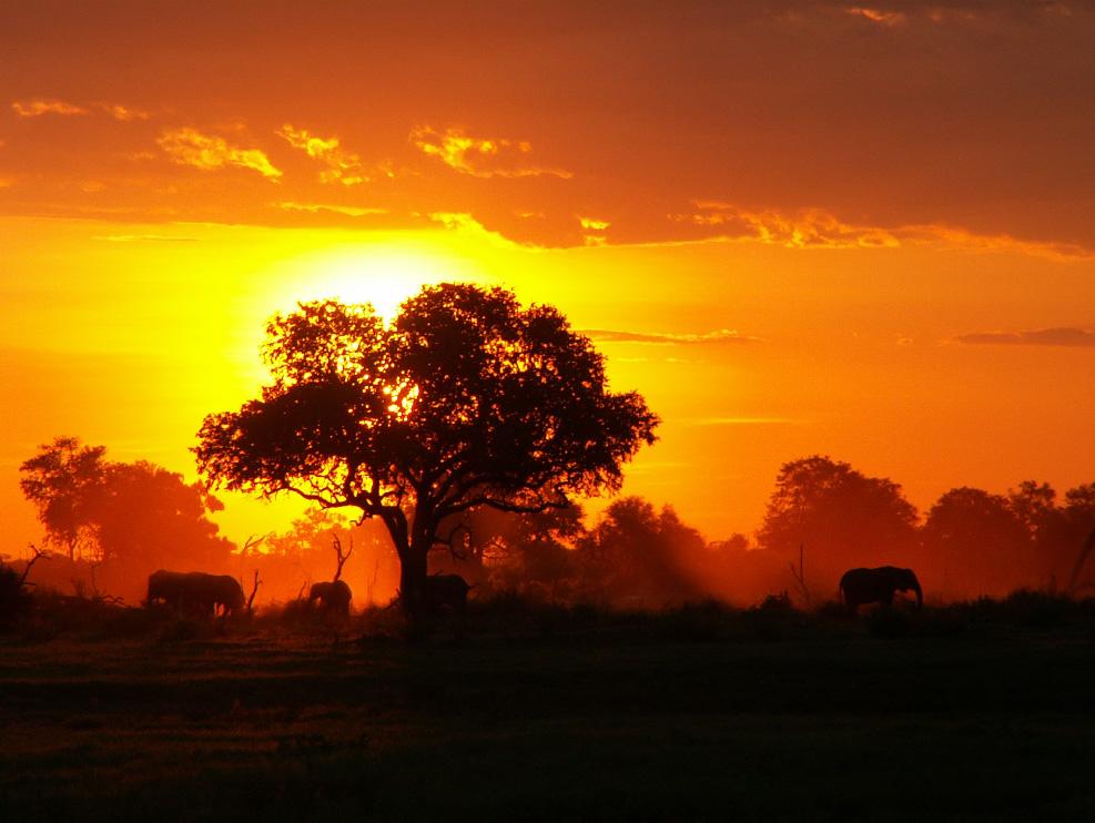 Aventura en áfrica. Sawa Expeditions