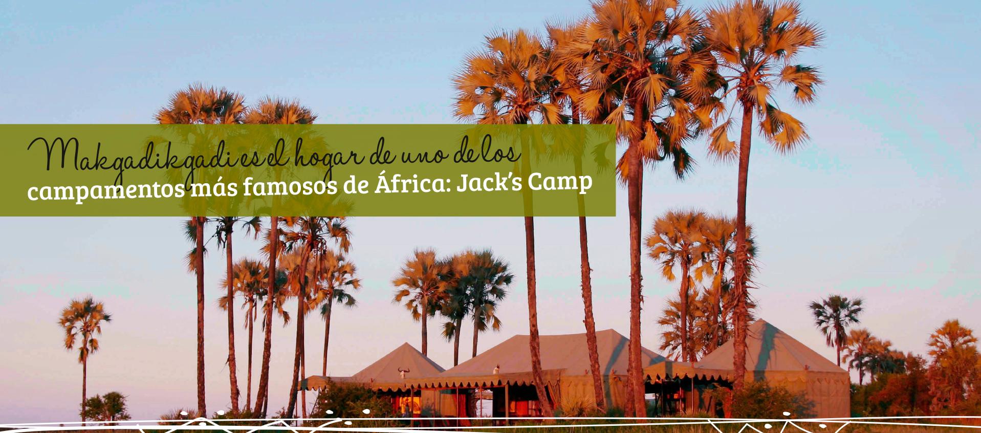 Makgadikgadi es el hogar de uno de los campamentos más famosos de África: el fabuloso Jack's Camp