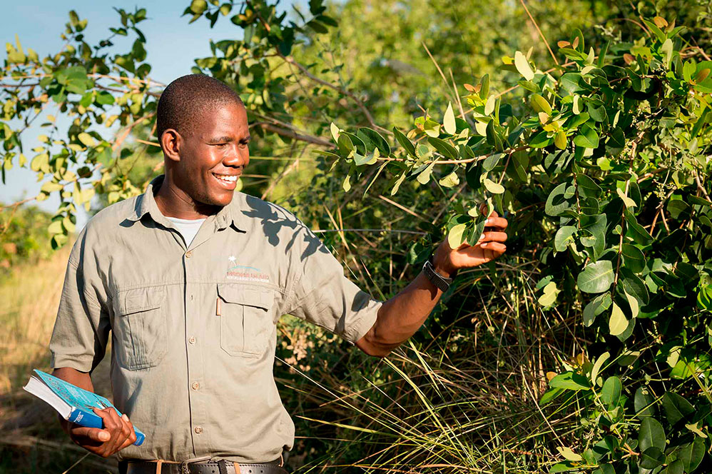 imagen itinerario Botswana 02 - Sawa Expeditions